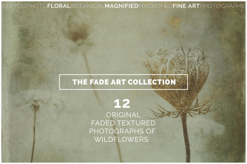 the-fade-art-collection