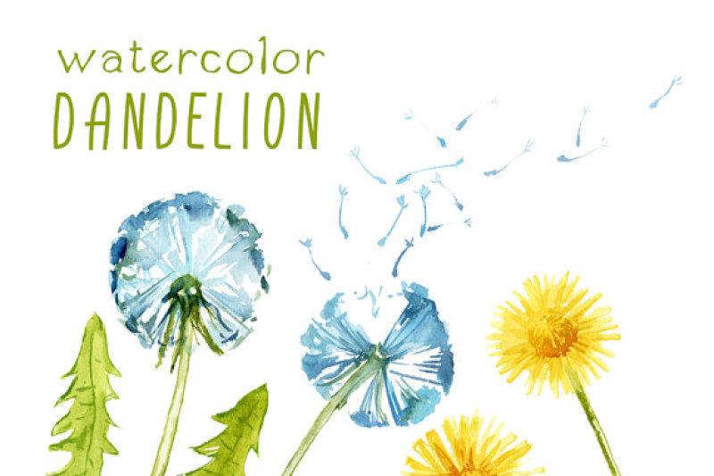 digital-clipart-watercolor-dandelion-watercolor-flower