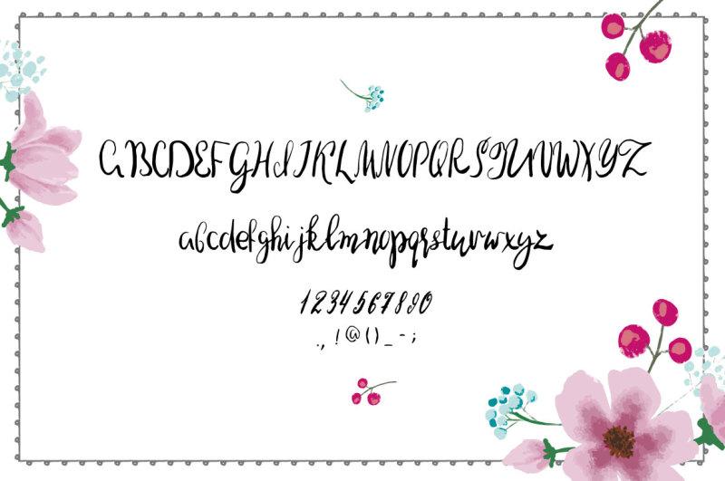 valeria-brushpen-font