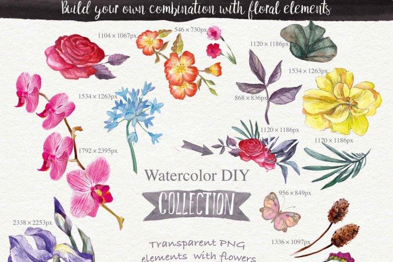 wild-flowers-watercolors-26-png