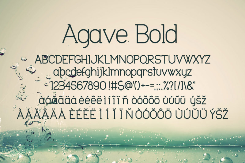 agave-font-trio