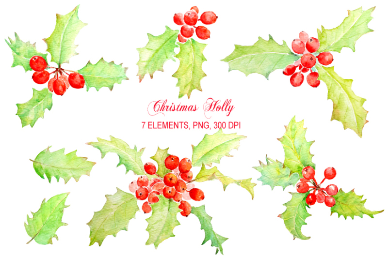 watercolor-holly-clipart