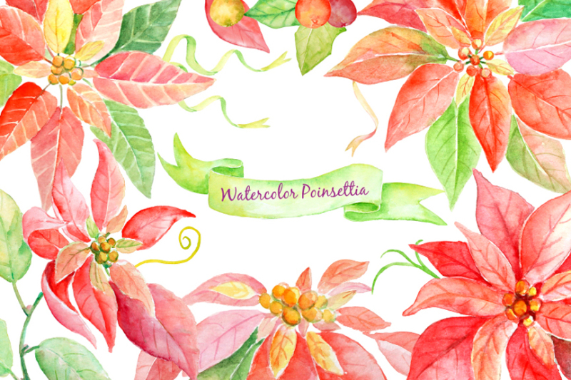 watercolor-christmas-clipart-poinsettia