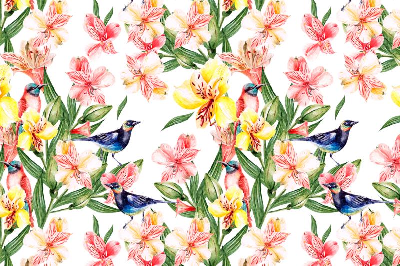 hand-drawn-watercolor-flowers-alstroemeria