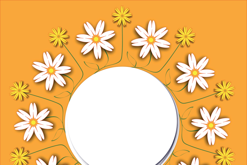 frame-floral-decoration-text-card-vector