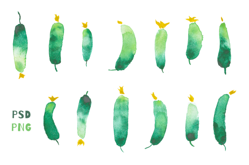 13-vegetable-watercolor-elements