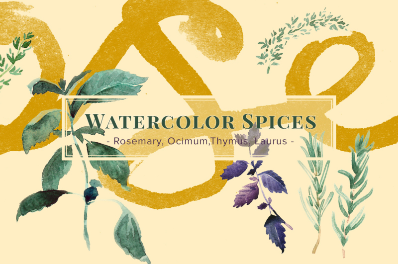 watercolor-spices-for-cooking