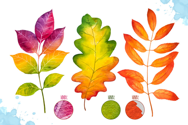autumn-leaves-watercolor-set