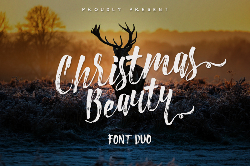 christmas-beauty