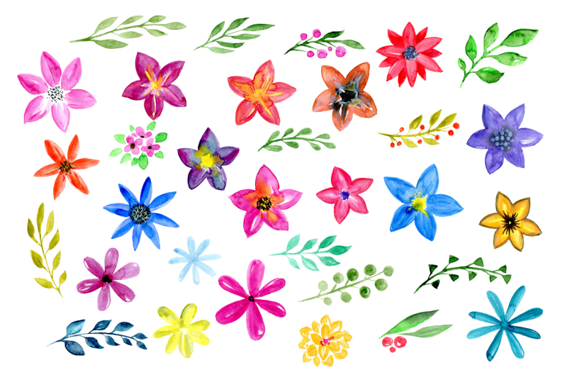 watercolor-flowers-and-floral-elements