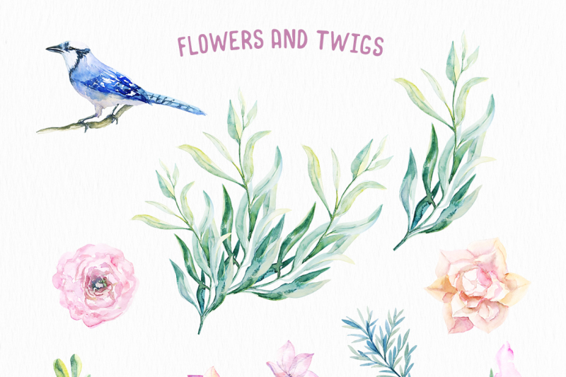 watercolor-jay-and-delicate-flowers