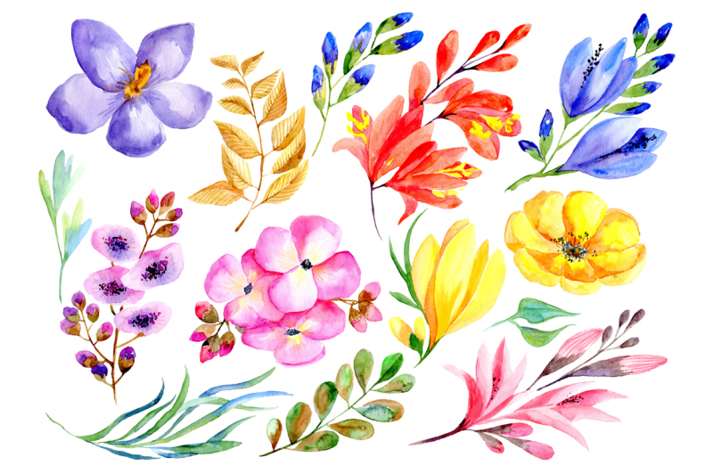 bright-colorful-watercolor-flowers-and-branches