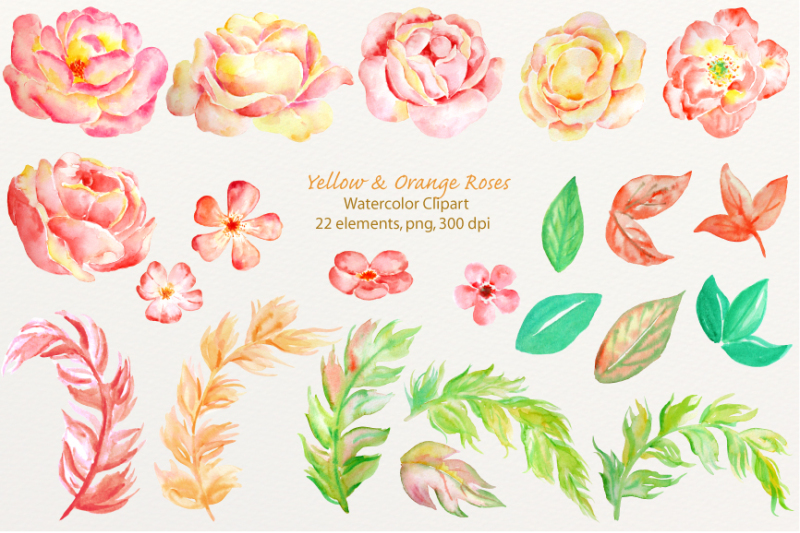 watercolor-clipart-orange-roses
