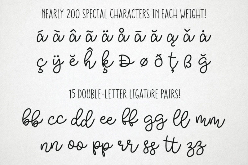 bobbles-script-font-with-3-weights