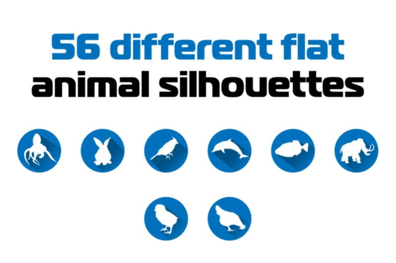 exclusive-56-different-flat-animal-silhouettes-icon-set
