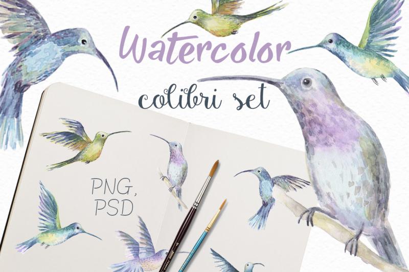 watercolor-colibri-set