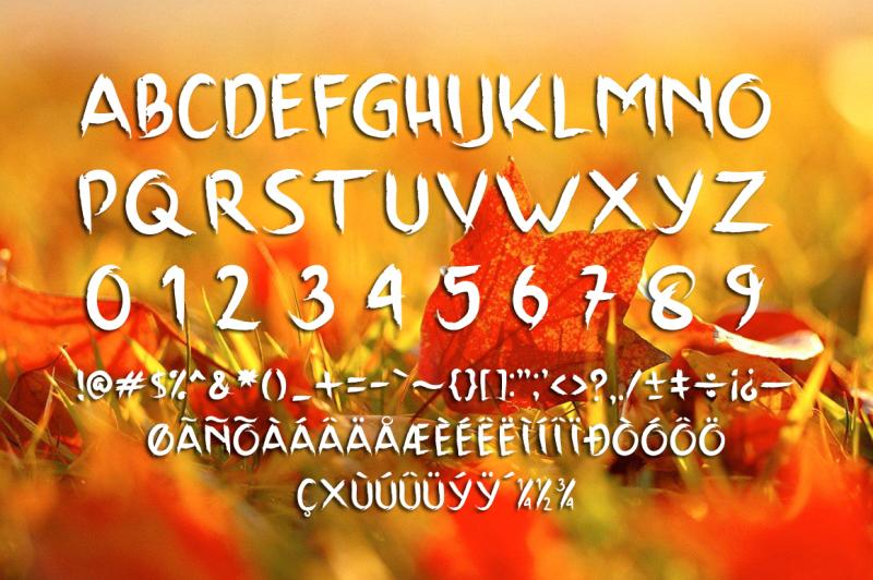 scrap-brush-typeface