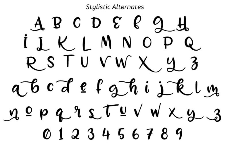zooky-squash-a-hand-lettered-typeface