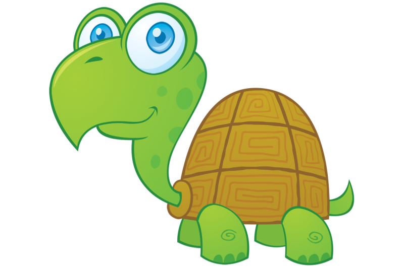 turtle-cartoon-character