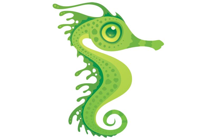 leafy-sea-dragon-seahorse