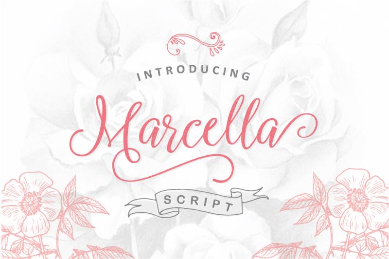 marcella-script