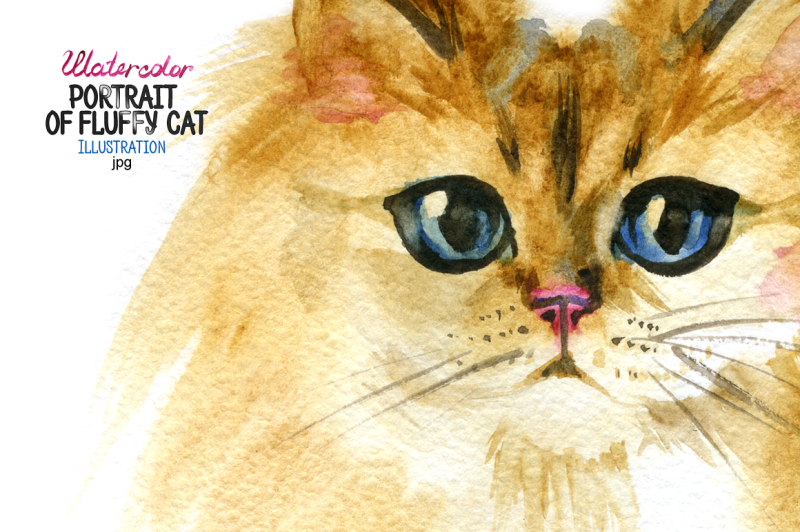 watercolor-portrait-of-a-fluffy-cat