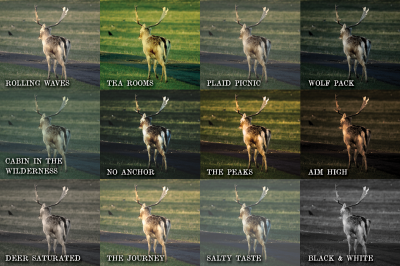 wilderness-photo-filters-extras