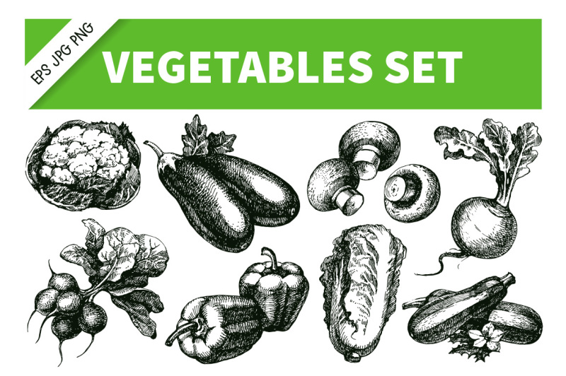 vegetables-hand-drawn-sketch-vector-set-2