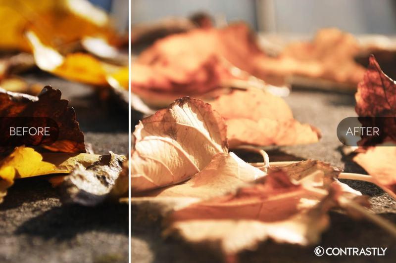autumn-and-harvest-lightroom-presets-vol-2