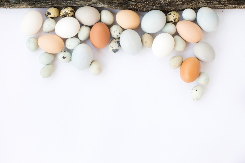 easter-background-with-colorful-eggs