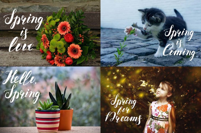 dreams-love-spring