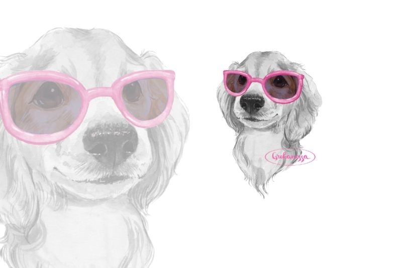 dog-pink-glasses