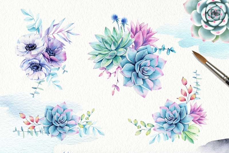succulents-and-anemones-waterclor-set