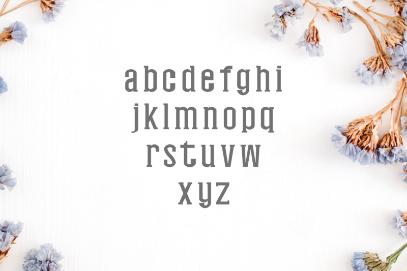 nasya-slab-serif-4-font-family-pack