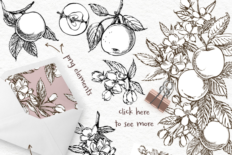 Apple Graphic Watercolor Clipart By Astro Ann Thehungryjpeg Com