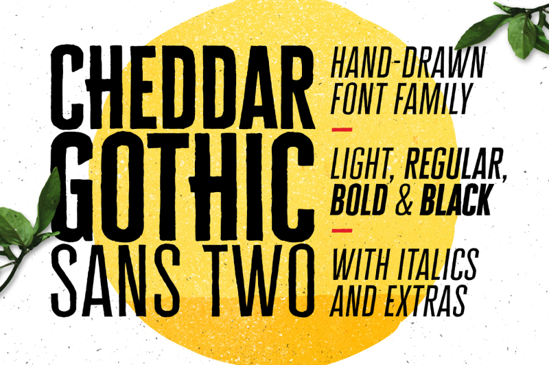 cheddar-gothic-sans-two-fonts