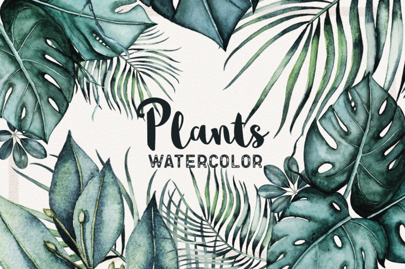 watercolor-plants