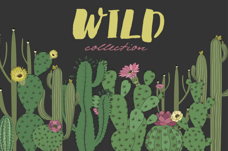wild-and-free-collection-cactus