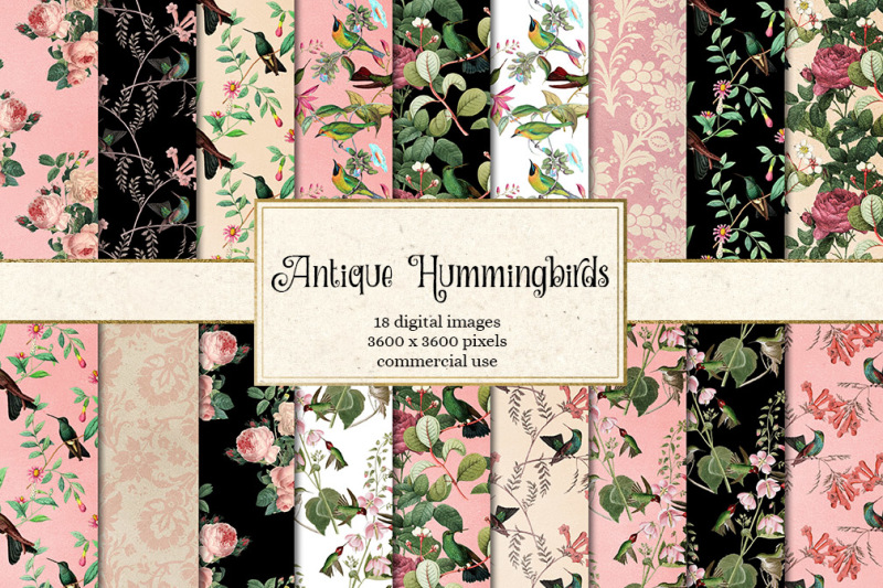 antique-hummingbirds-digital-paper