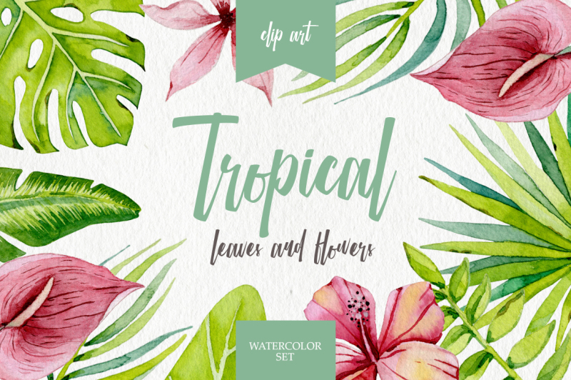 tropical-leaves-and-flowers
