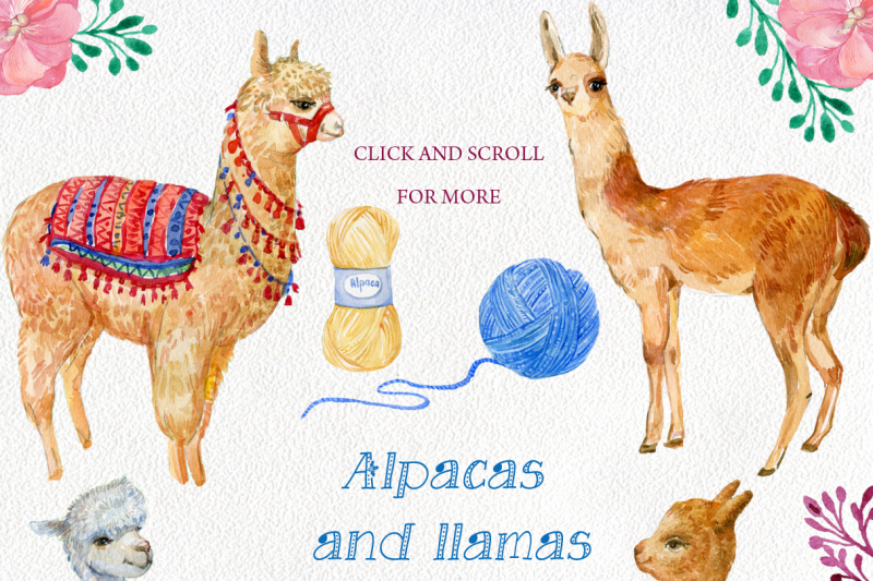 alpacas-and-llamas-watercolor