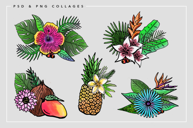 tropical-watercolors-and-illustrations
