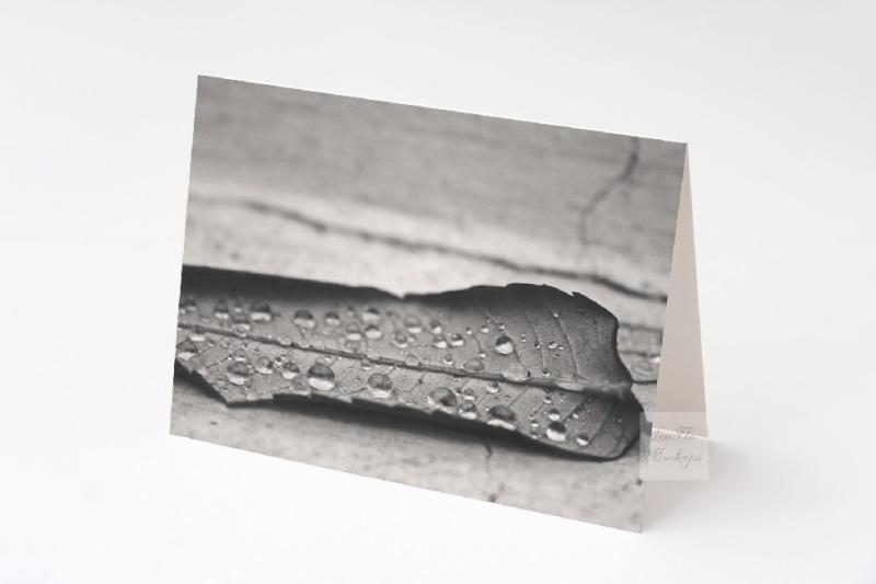 Free Greeting card mockup birtday invitation psd horizontal mock up (PSD Mockups)