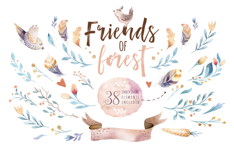 friends-of-forest