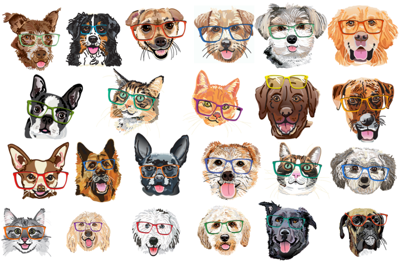 23-illustrated-pets-in-glasses