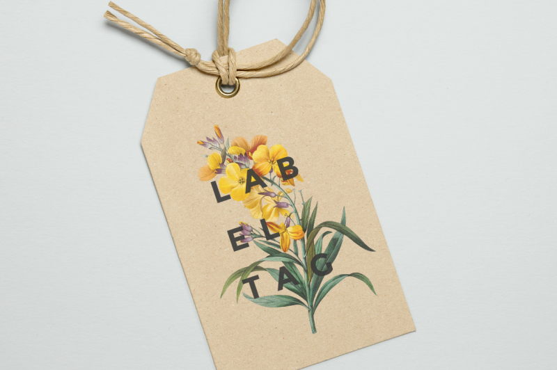 flowers-vintage-yellow-wallflower