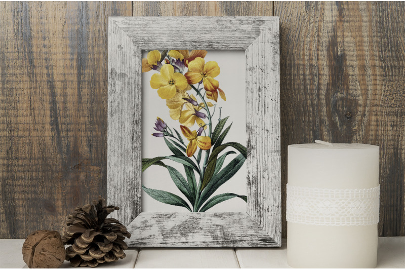 yellow-flower-clipart