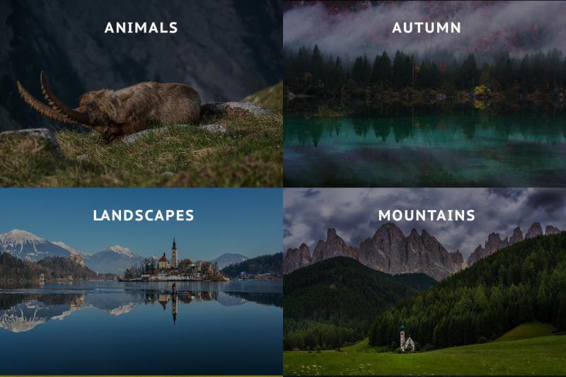 ultimate-photo-bundle-2017-500-stock-images
