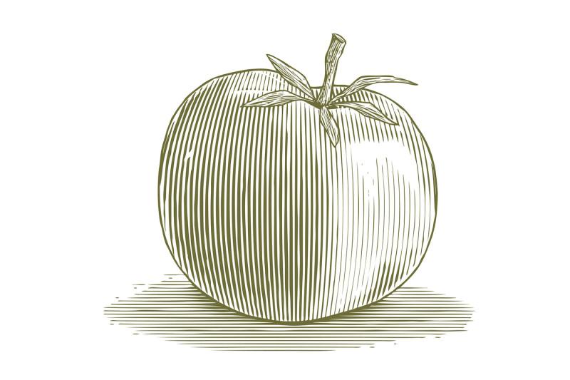 woodcut-tomato