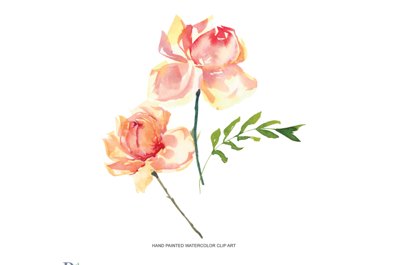 watercolor-purple-and-peach-rose-clipart